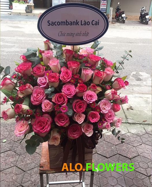 Đặt hoa online Tây Ninh