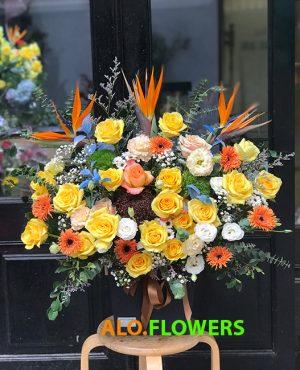 Đặt hoa online Tân Bình